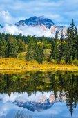 Fotografie Patricia Lake unter den immergrünen Wald, gelbe Büsche und die Berge. Herbst in den Rocky Mountains von Kanada