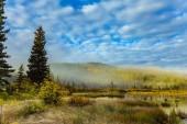 Fotografie Kühle Herbstmorgen in den Rocky Mountains. Morgennebel erstreckt sich über den Wald und Patricia Lake. Das Konzept des Ökotourismus
