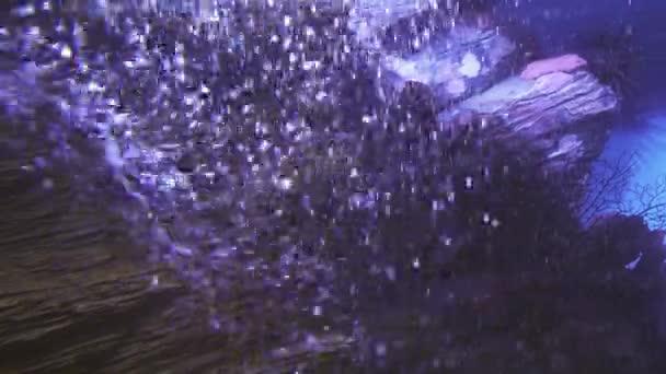 Pozadí z podvodní vzduchové bubliny ve vodě moři akvárium stopáže videa