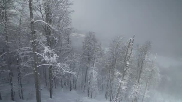 North slope Aibga Ridge Western Caucasus at ski resort Gorky Gorod stock footage video