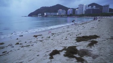 Garbage in the sand after the evening tide on the Dadonghai Beach on the tourist island of Hainan stock footage video