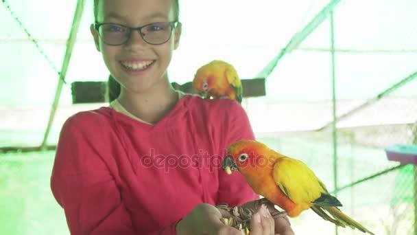 Mladá dívka krmí papoušky Lovebird stopáže videa