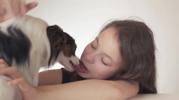 Beautiful teen girl and dog Continental Toy Spaniel Papillon kissing and fooling around on white background stock footage video.