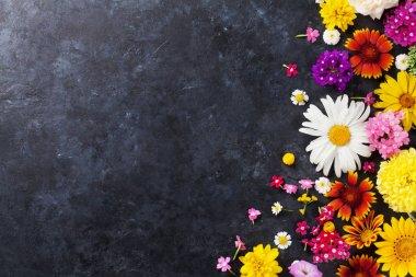 Flowers on stone background