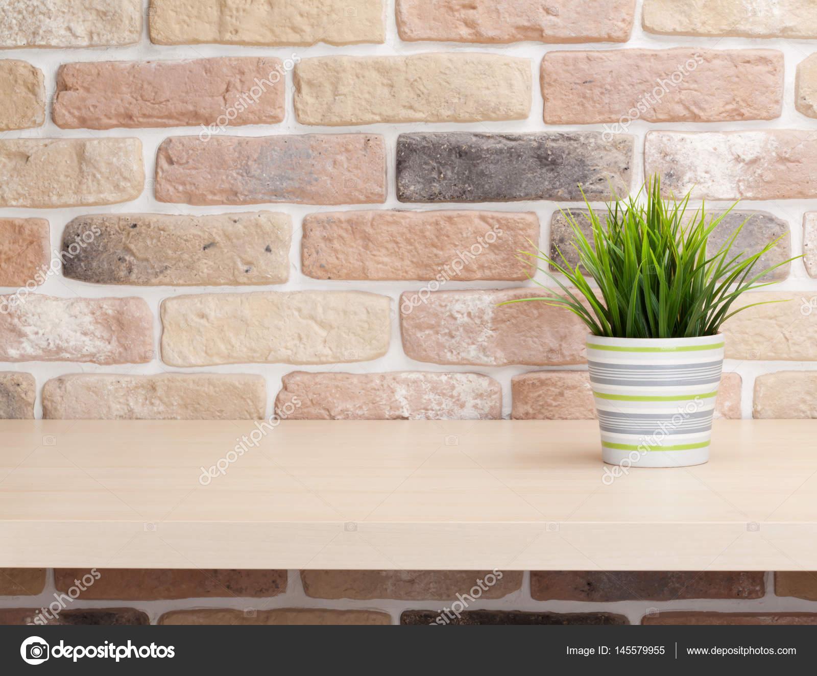 Pianta conservata in vaso sulla mensola u foto stock karandaev