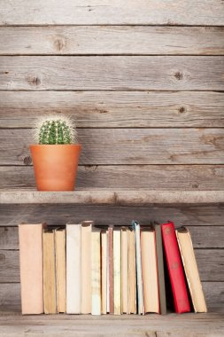 Old books and cactus