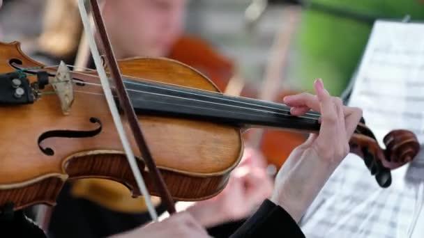 Hegedűs hegedül egy zenekarban a szabadban