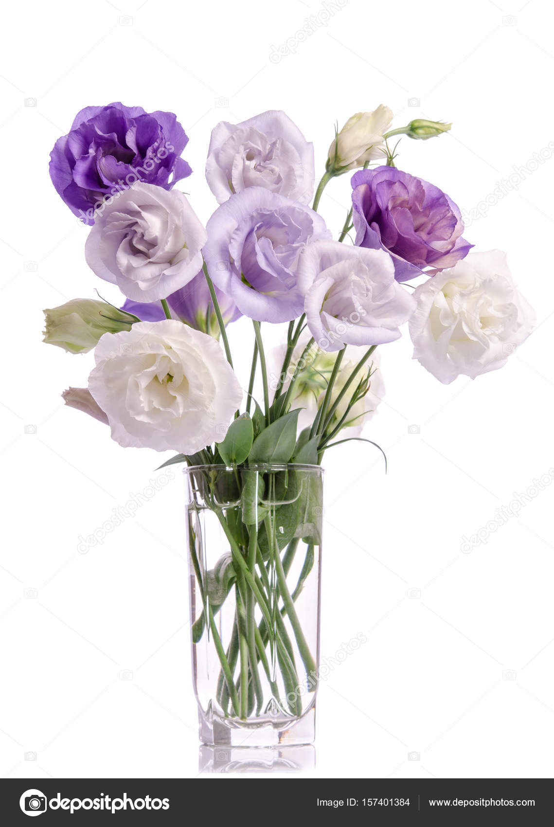 Bunch Of Violet White And Violet Eustoma Flowers In Glass Vase
