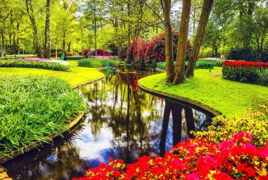 Blooming Garden of Europe, Keukenhof park. Netherlands.