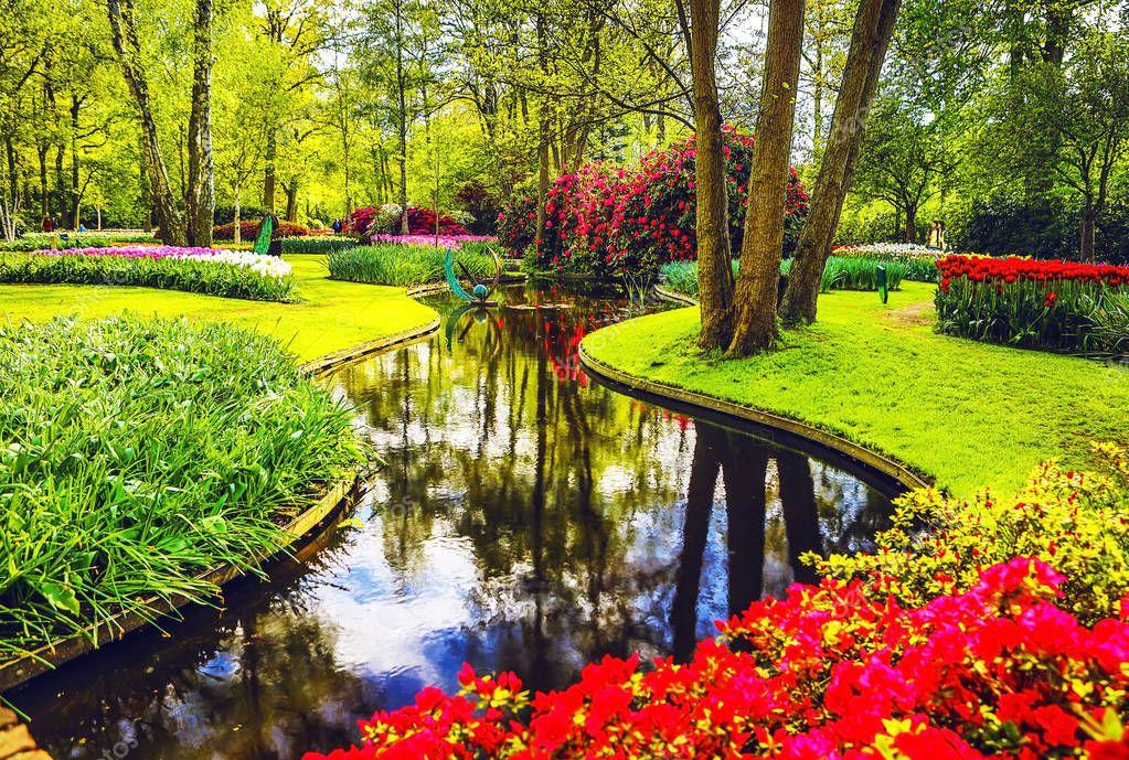 Blooming Garden of Europe, Keukenhof park. Netherlands.