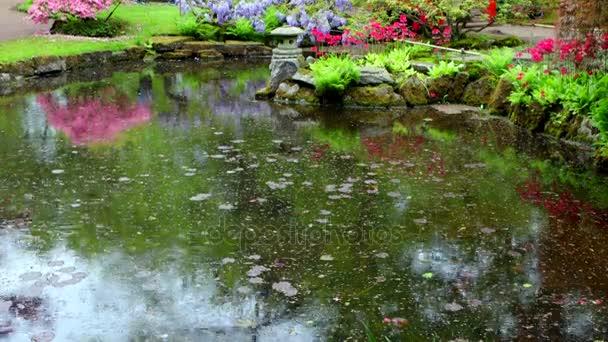 Tradiční japonská zahrada v Haagu. 4 k Time Lapse záběry.