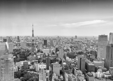 Tokyo skyscrapers and Tokyo Tower aerial view