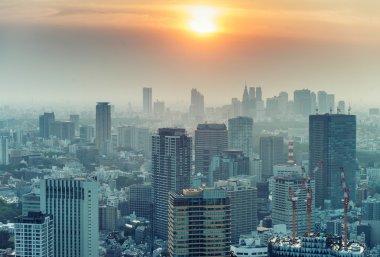 Tokyo skyline, aerial view at dusk
