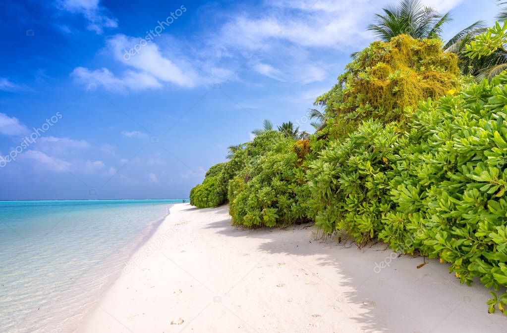 Beautiful beach of Maldives