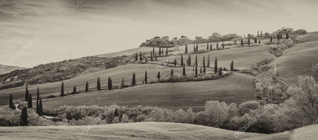 Black and white view of Val Dorcia windy road and hill