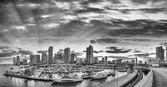 Černobílý pohled na Downtown Miami. Panoramatický záběr z portu