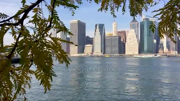 Lower Manhattan from Brooklyn Bridge Park, New York, USA