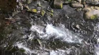 stream of flowing clear cold water in mountains, video