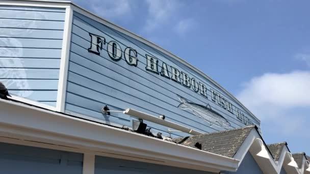 vchod do mlhy přístavu Fish House Restaurant - San Francisco, Kalifornie, Usa. Video