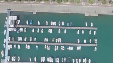 aerial overhead view of city promenade with green palm trees, video