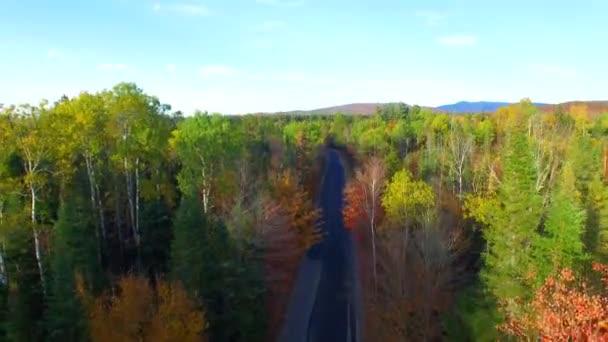 panoramatický letecký pohled na barevné lesa na podzim