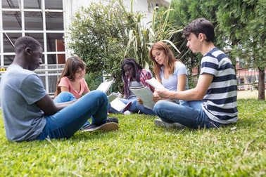 Group of multi ethnic teenagers making school homework seated on the grass.