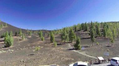 aerial view of Santiago del Teide, island Tenerife, province of Santa Cruz de Tenerife, Canary Islands, Spain. Video
