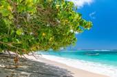 Bella spiaggia delle Seychelles
