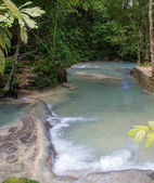 Photo Shallow Waters at the Dunns River Falls in Jamaica