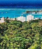 Photo Vegetation in Ocho Rios, Jamaica