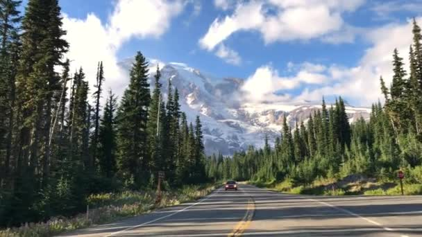 road along evergreen forest in Mount Rainier National Park, USA