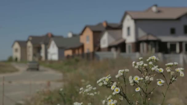 Car driving along quiet suburban street. Summer sunny day, a number of cottage houses stand beside the road.