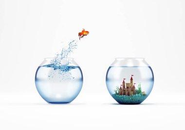 Goldfish leaping in an aquarium