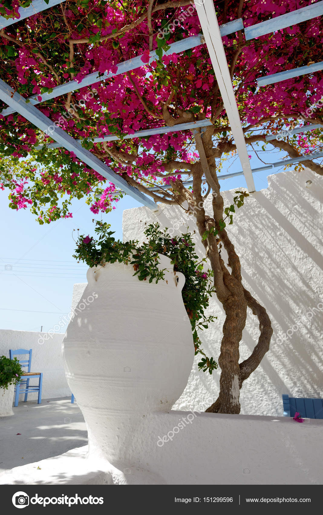 Decorazione Anfora Hotel In Tradizionale Stile Greco Con Fiori Di