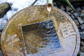 Photo Close up on ritual washing basin at Ryoan-Ji