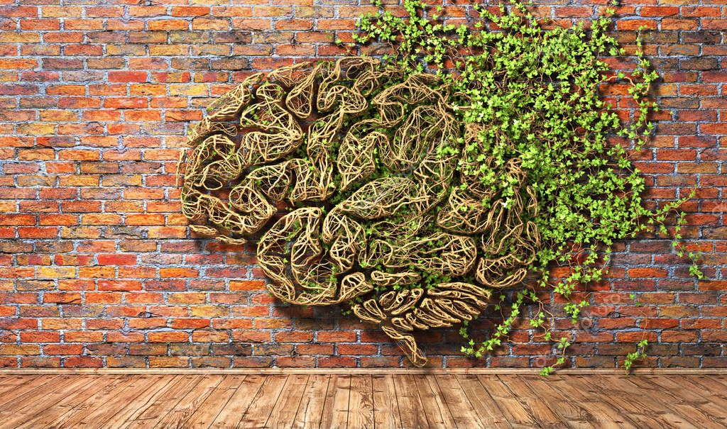 Concept of thinking. The green plant in form of human brain on a