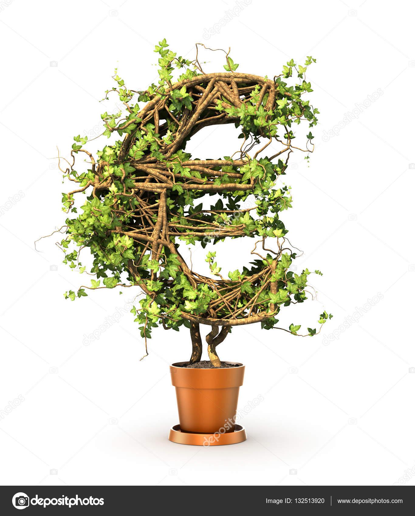 Pianta Verde In Forma Di Segno Dei Soldi Illustrazione 3d Foto