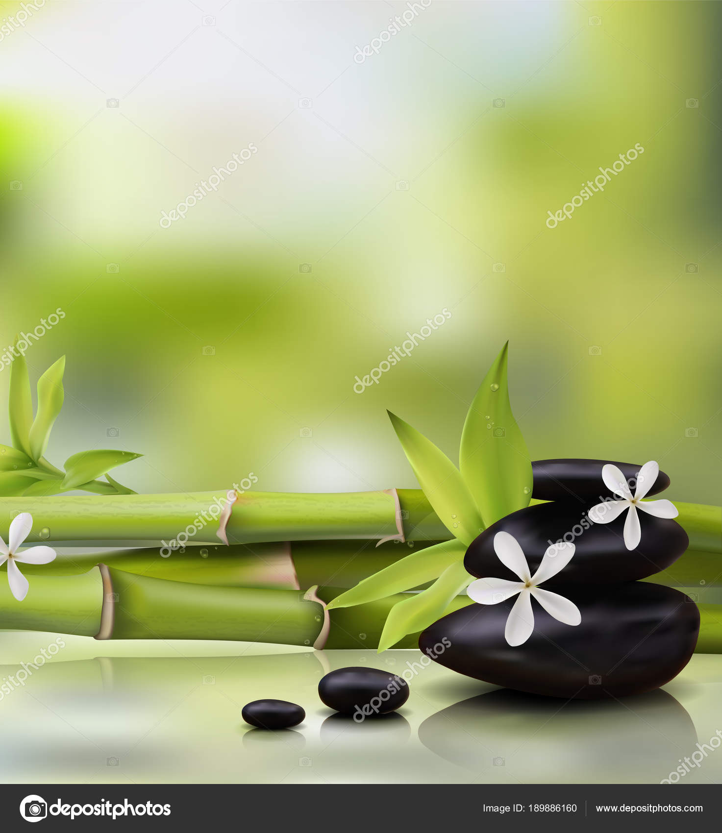 spa background with bamboo and stones vector stock vector