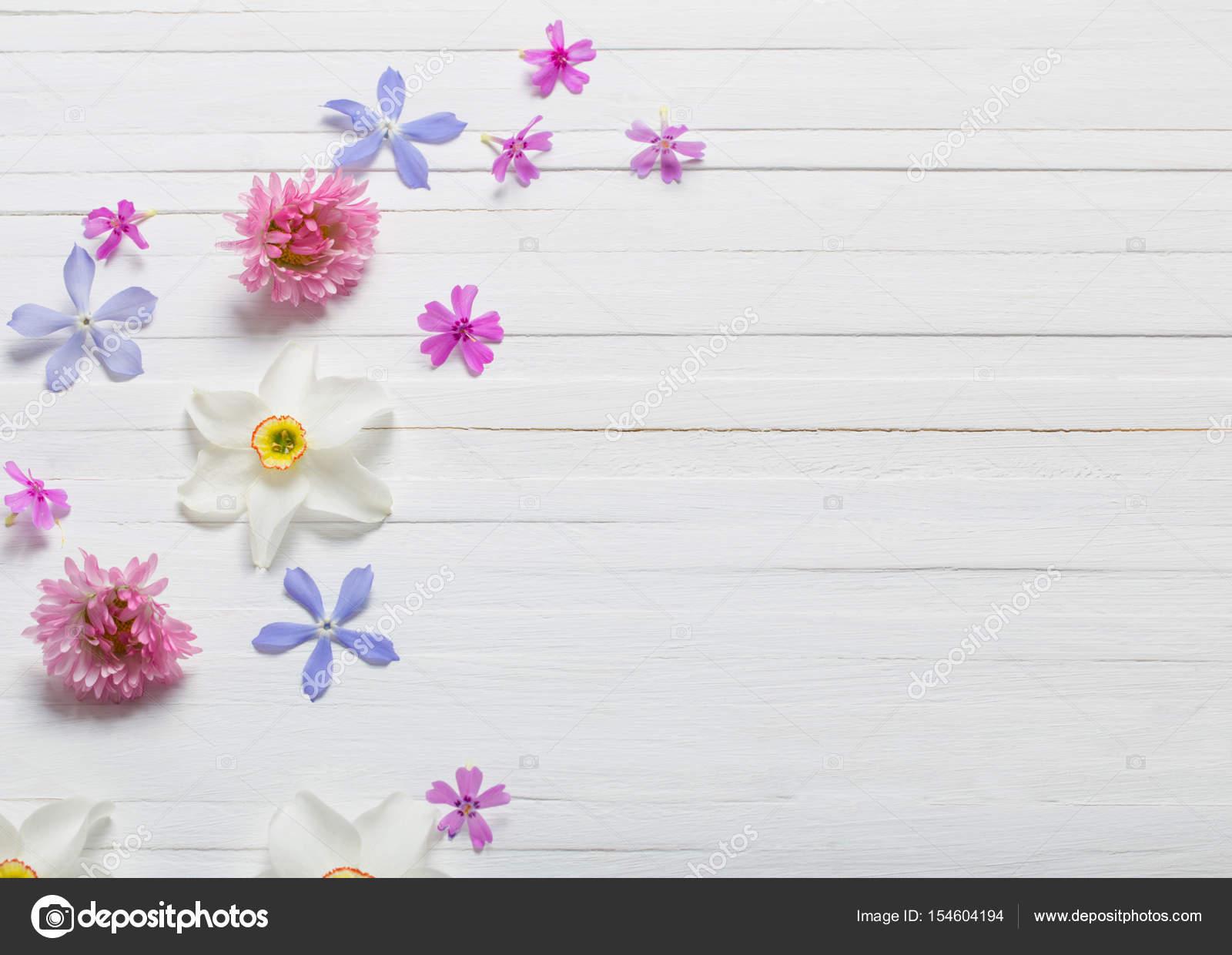Flores Lilas Con Rosas Sobre Fondo: Flores De Primavera Sobre Fondo Blanco De Madera
