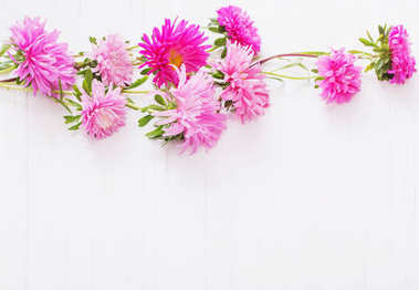 asters on white wooden background