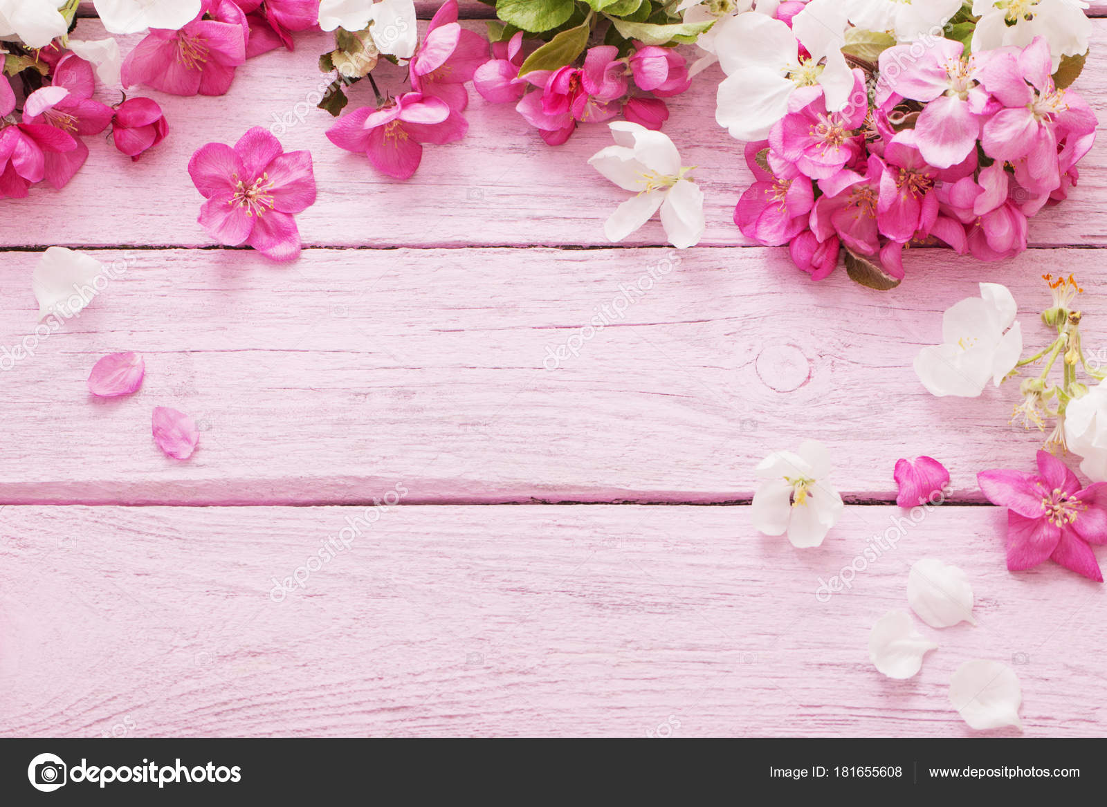 Pink Spring Flowers Wooden Background Stock Photo Kruchenkova