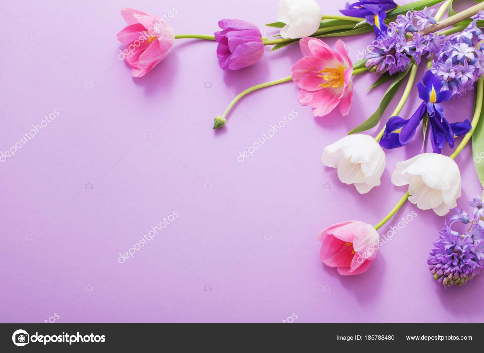 Beautiful Flowers On Paper Background Stock Photo Kruchenkova