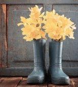 zahradní dětské boty s jarní květy