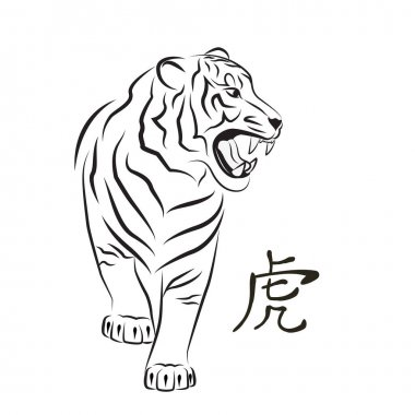 Angry tiger. Sketch.