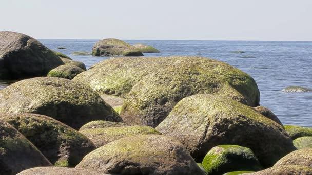 Měděná barva nevypočitatelné balvany na pobřeží Baltského moře. Letní vlna