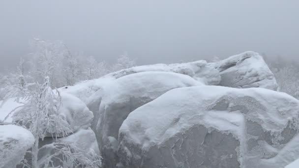 Sibiřská zima. Mráz a sníh lesnatého, pokryté mrazem kameny
