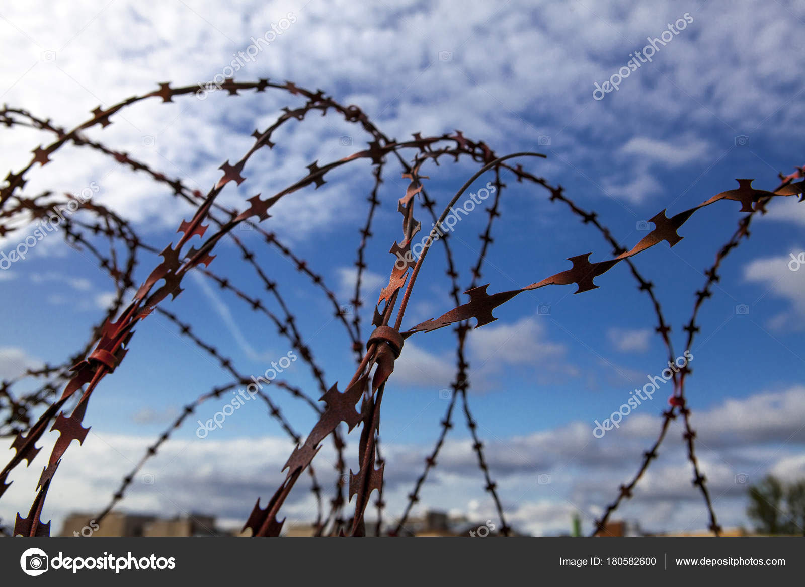 Prison. Barbed wire. Barbed wire on blue sky background with white ...