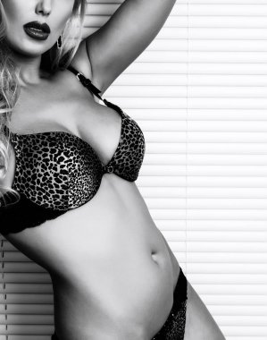 Beautiful blond sexy lady in lingerie