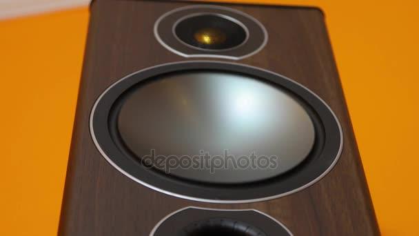 Hi-Fi Loudpeaker membrán