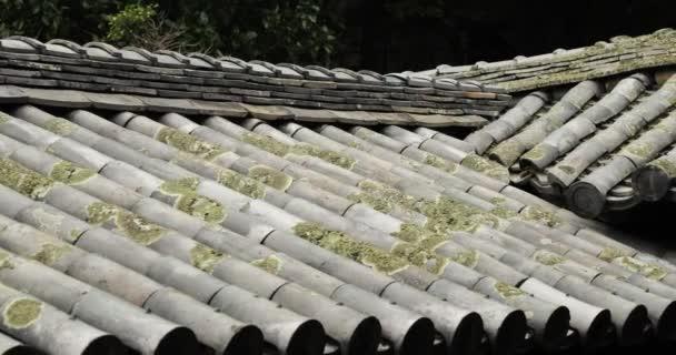 Střecha tradiční staré budovy v Japonsku